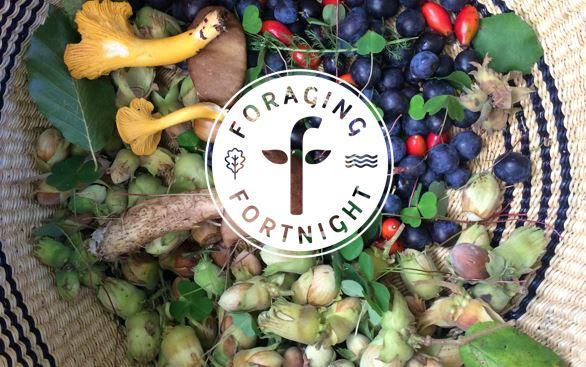 Foraging-fortnight-Basket-and-logo